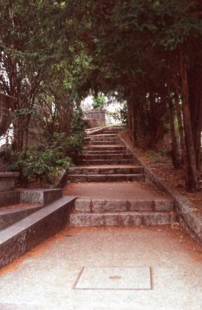 photo026